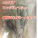 『エコギア』ロックフィッシュ最強ワームを探せ!!(2016 年までのパワーオーシャンカップから読み解く)